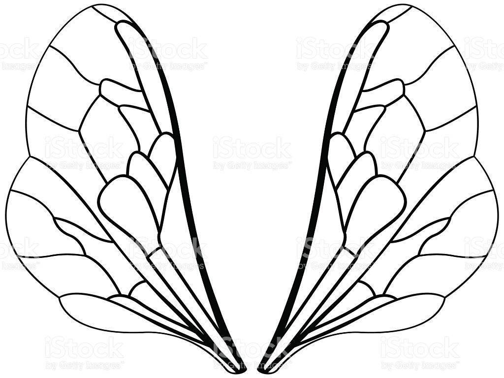Pin on inspiration . Wing clipart bug