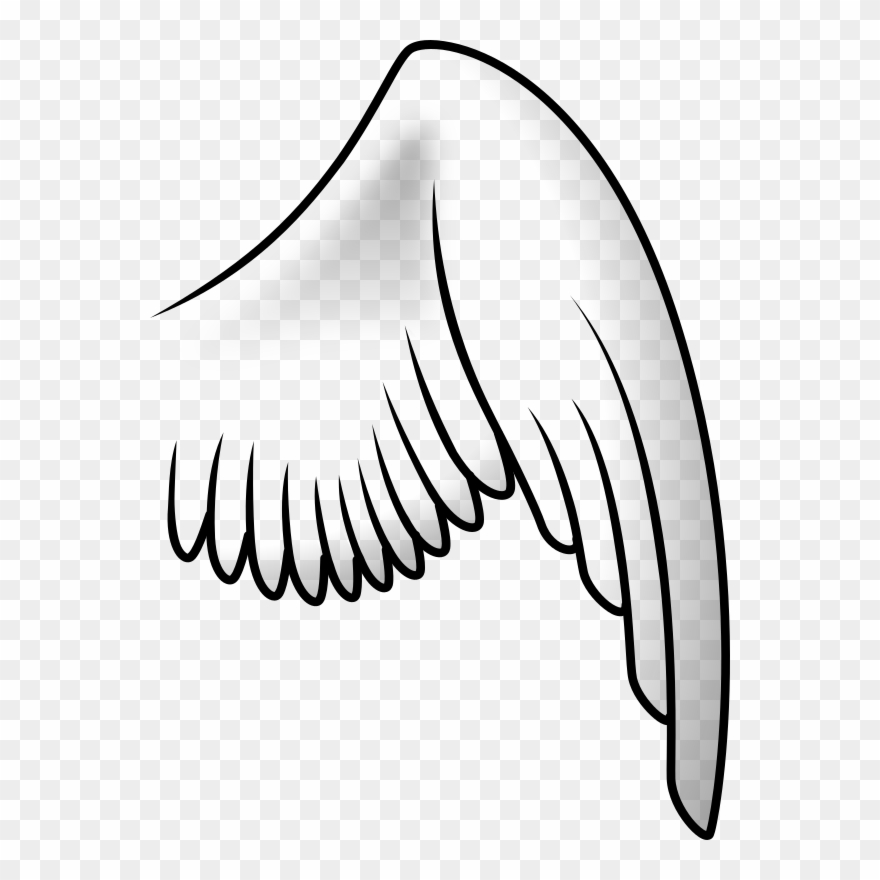 Wing clipart cartoon. Drawing angel bird black