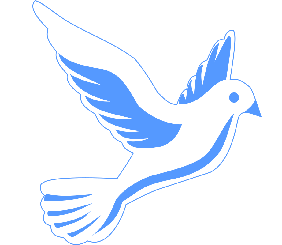 Wing clipart dove wing. Medium image png