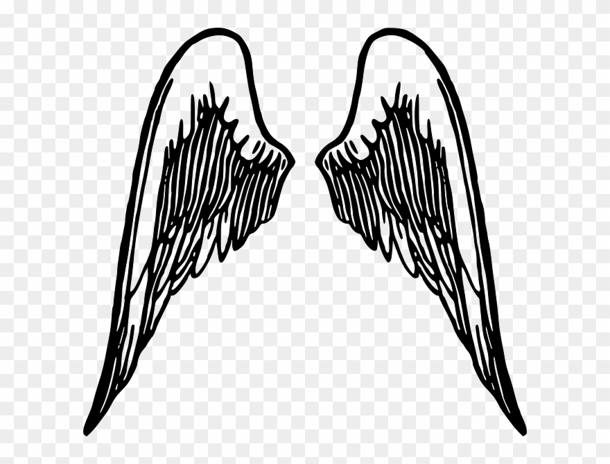 How to draw wings. Wing clipart drawing
