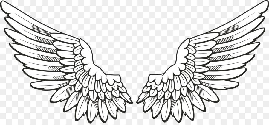 Wing clipart drawing. Bird line design transparent