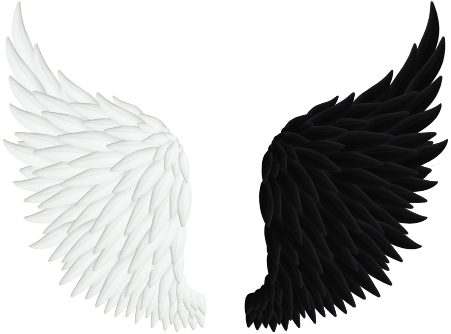 Clip art black and. Wing clipart fallen angel