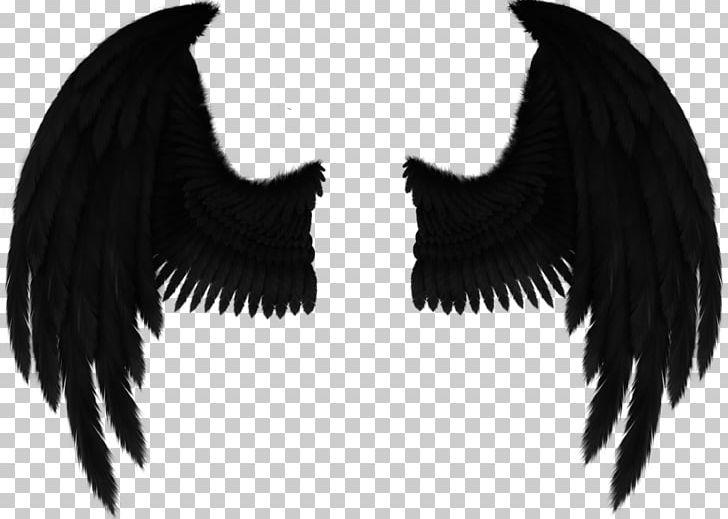 Wing clipart fallen angel. Drawing art png wings