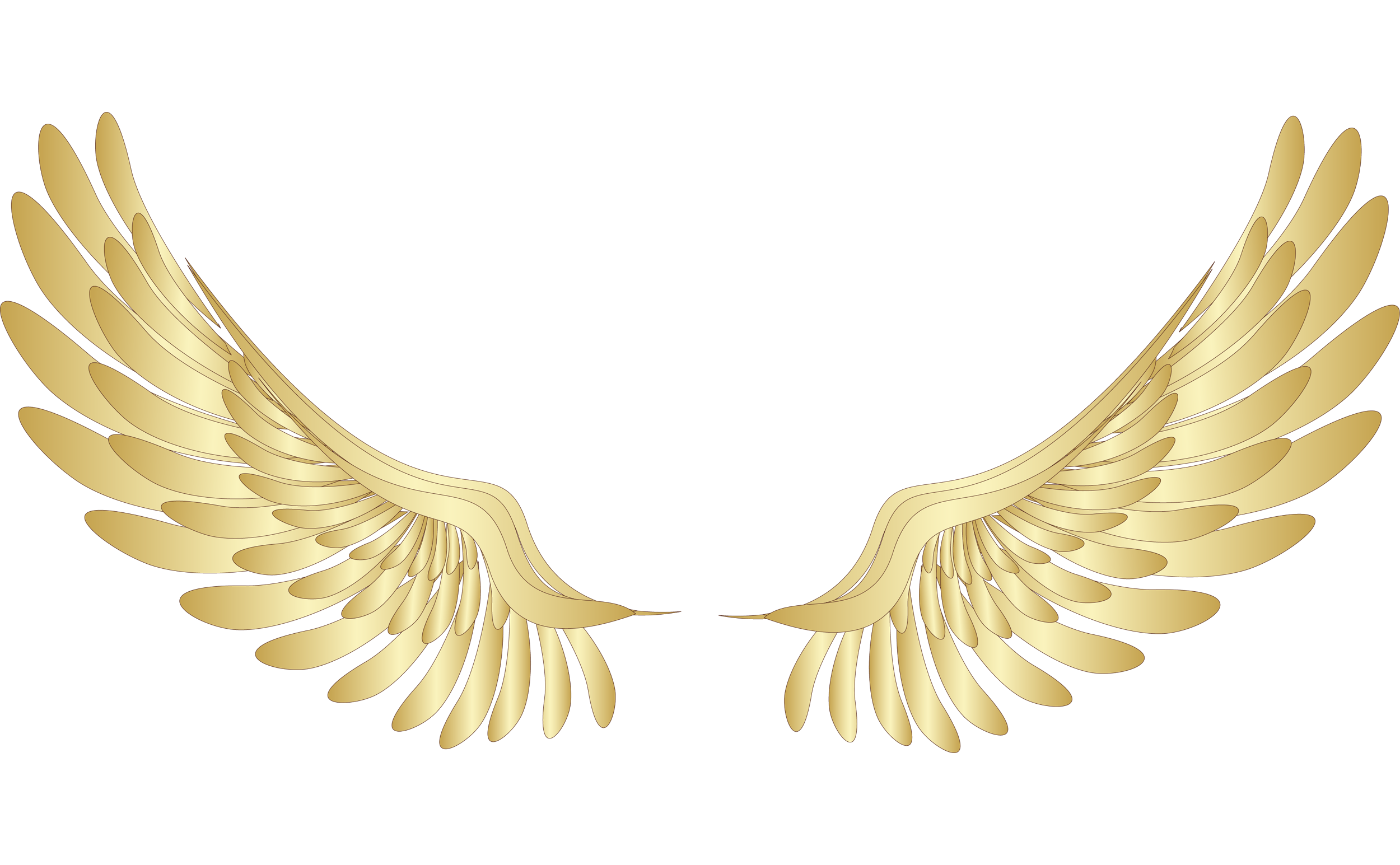 Gold clip art golden. Wing clipart feather wing