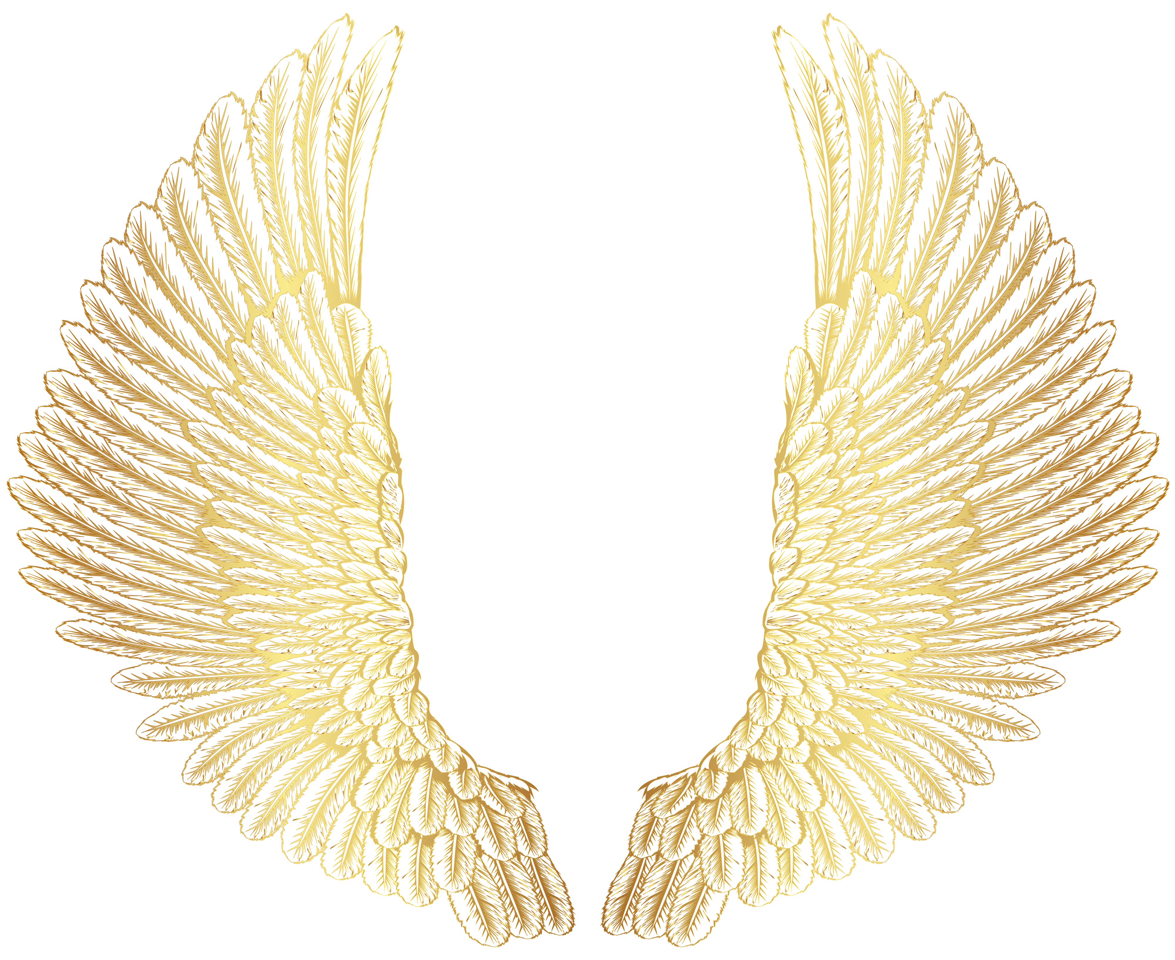 Wing clipart feather wing. Gold wings png clip