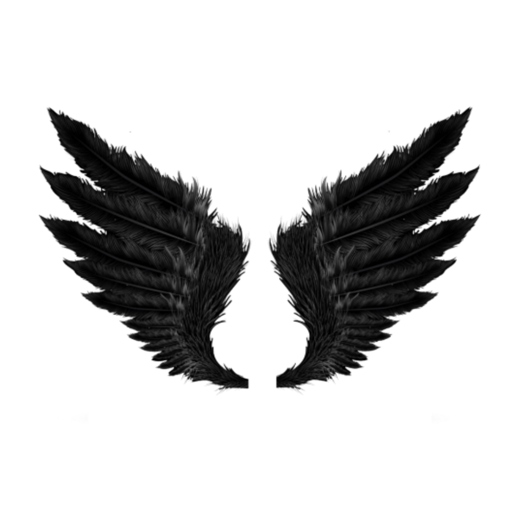 Wings black crow fly. Wing clipart feather wing