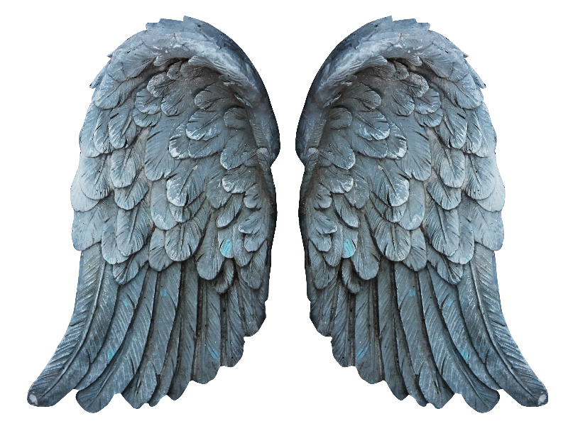 Wing clipart grunge. Stone angel wings png