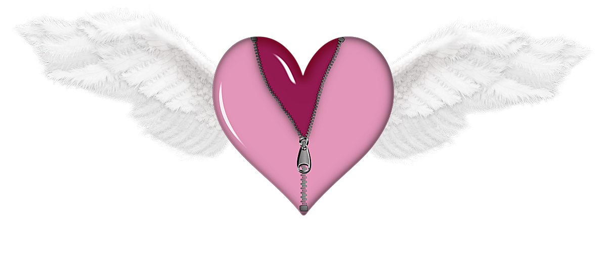 Zipped with wings png. Wing clipart heart