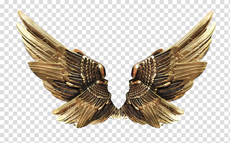 Wing clipart metal. Gold organization transparent background