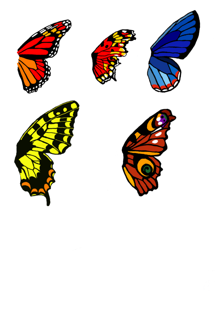 Wing clipart one wing. Butterfly bases set by