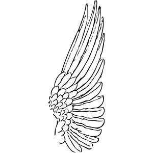 Cliparts of free download. Wing clipart one wing