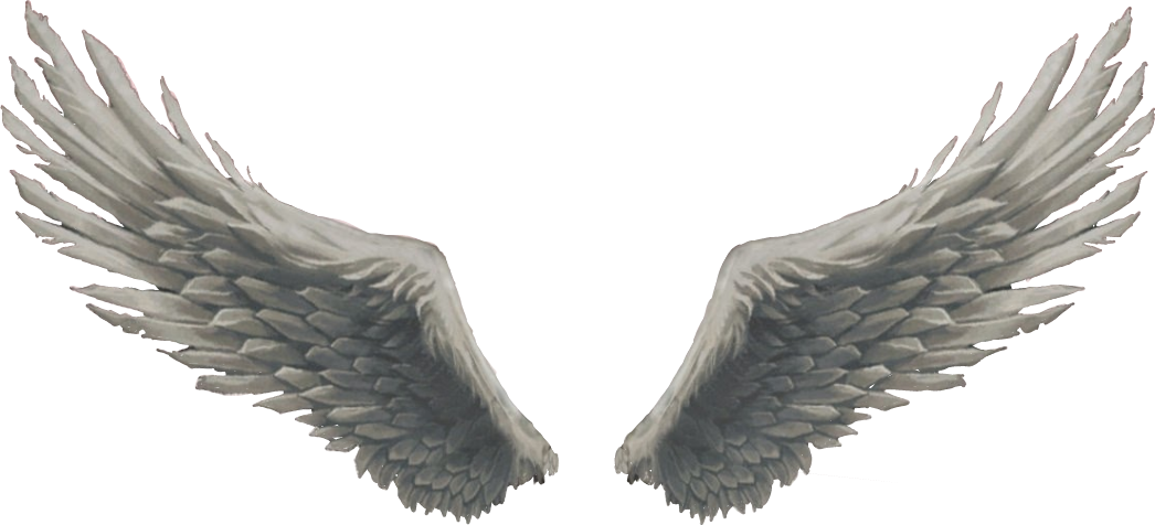 Angel wings god sticker. Wing clipart picsart