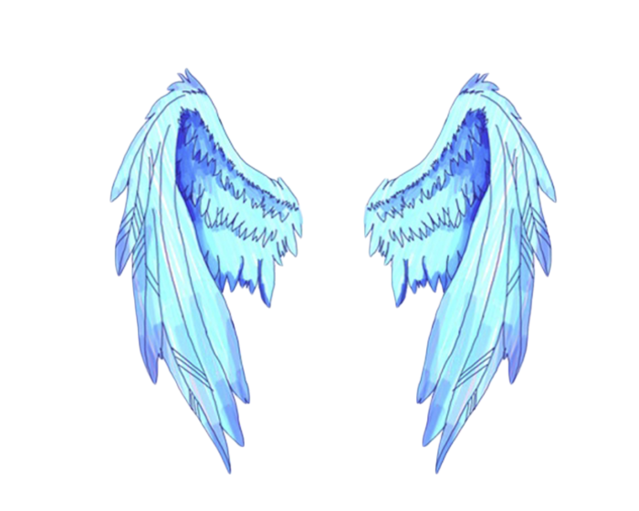 Wing clipart picsart. Tumblr wings sticker by
