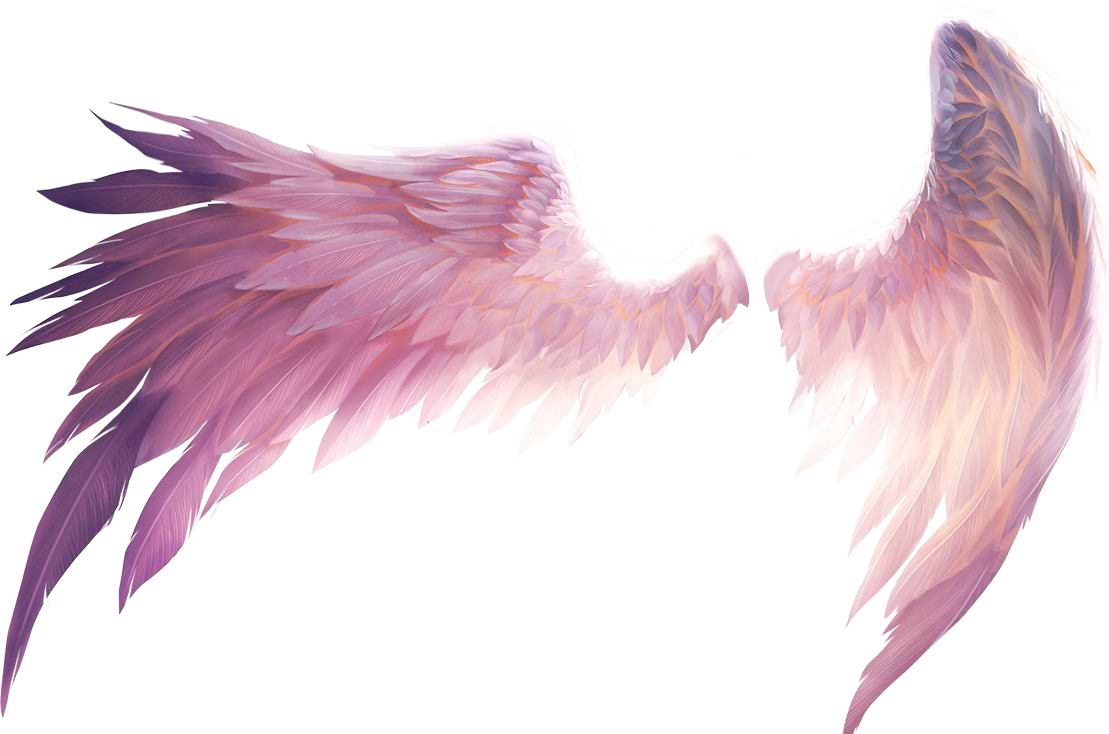 Wing clipart picsart. Wings angelwings angel ftestickers