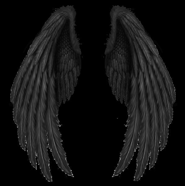Transparent black wings png. Wing clipart picsart