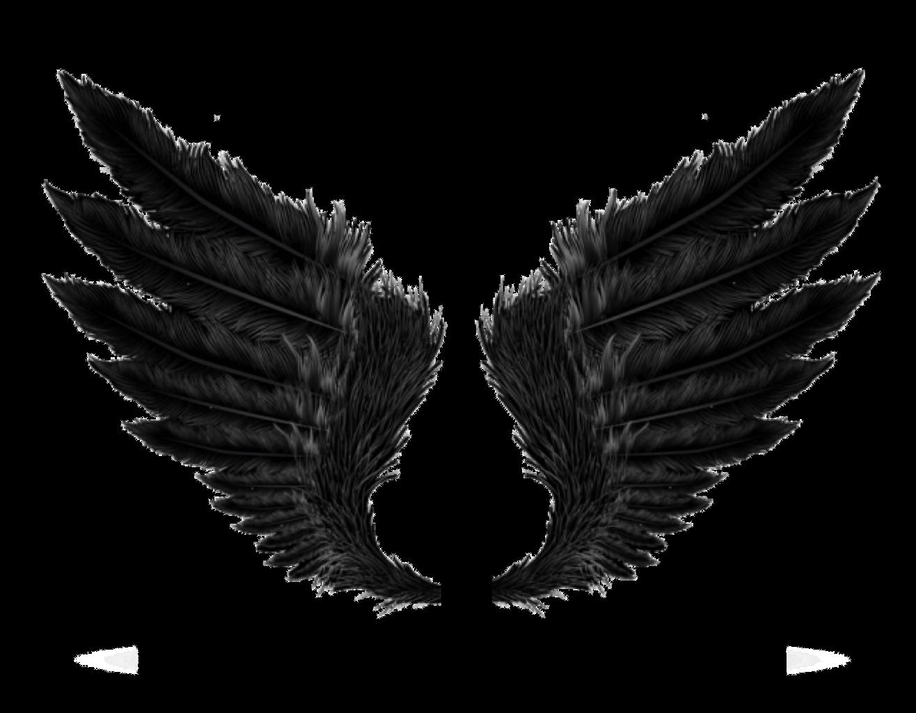 Wings black freetoedit sticker. Wing clipart picsart