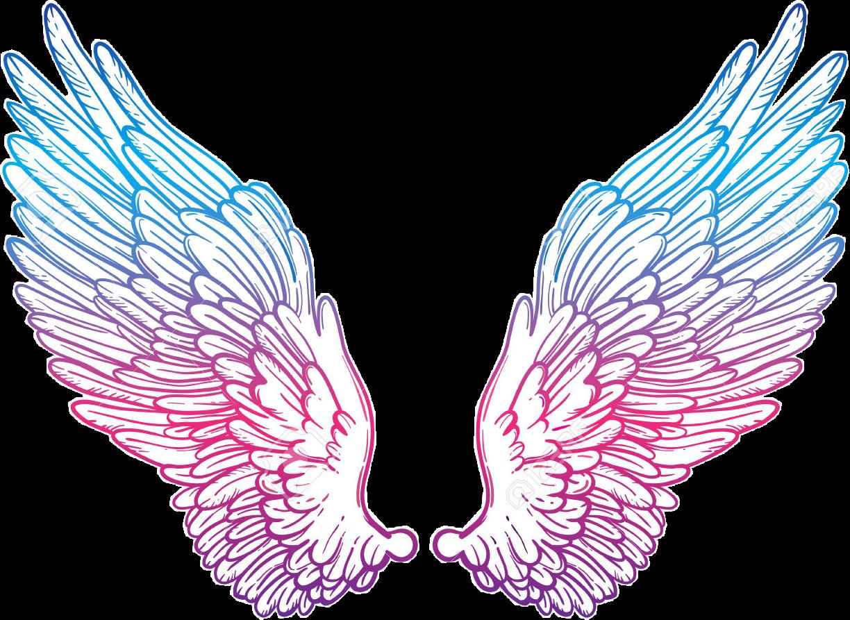 Cute kawaii wings colorfull. Wing clipart picsart