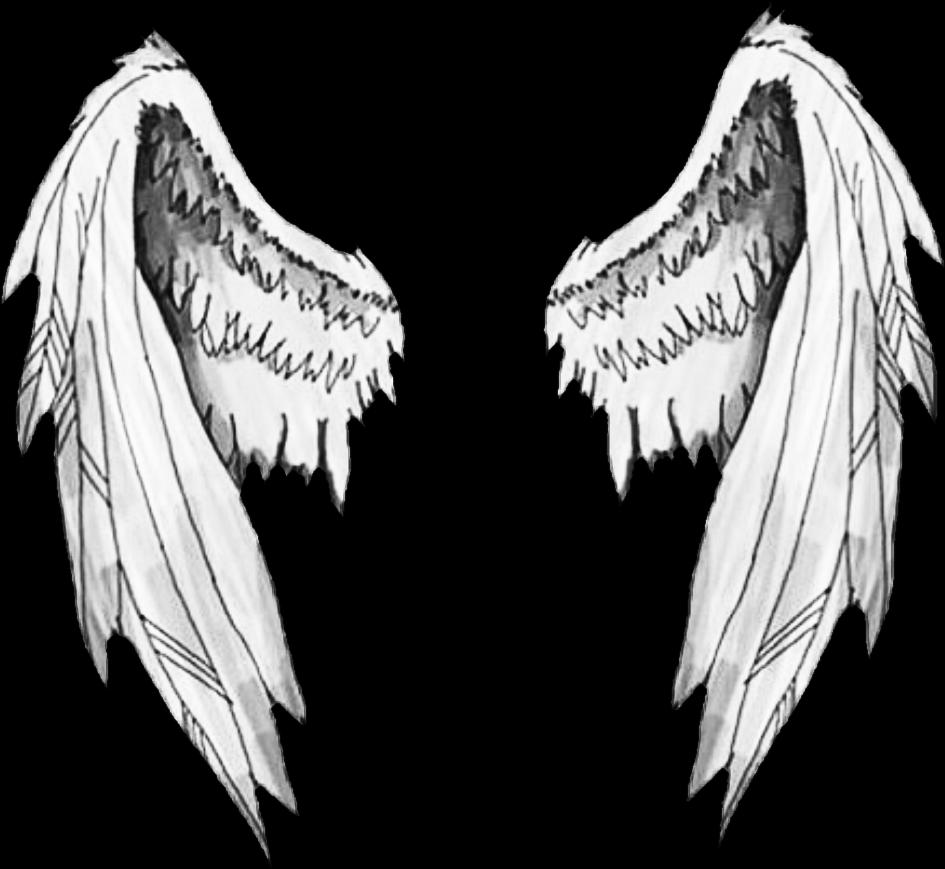 Wing clipart picsart. Wings sticker by heejinsbunbun