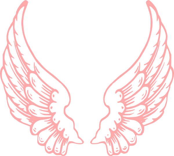 Wings clip art at. Wing clipart pink