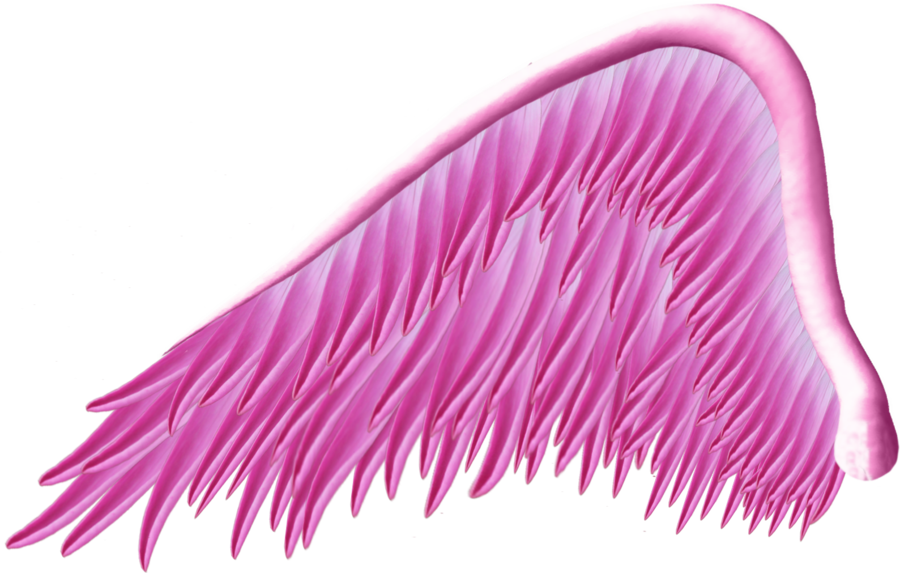 Wing clipart pink. Angel png by thy