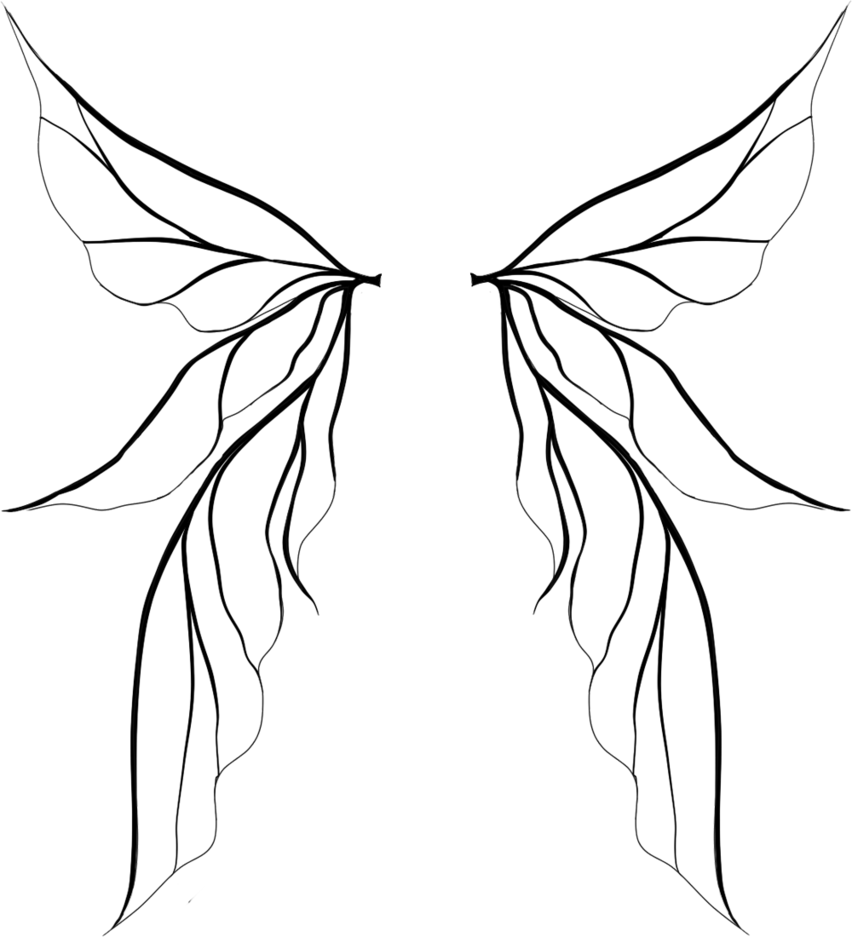 Fairy wings by dinloss. Wing clipart plain