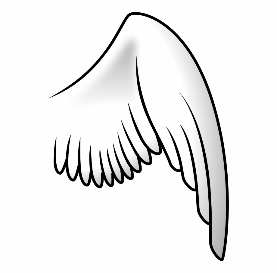 Wing clipart right. Angel transparent png download