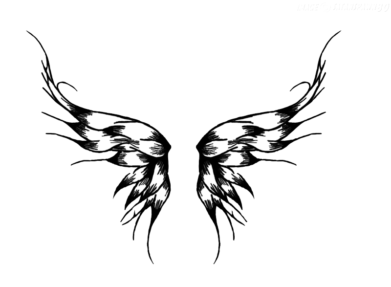 Wing clipart single. Wings tattoos png transparent