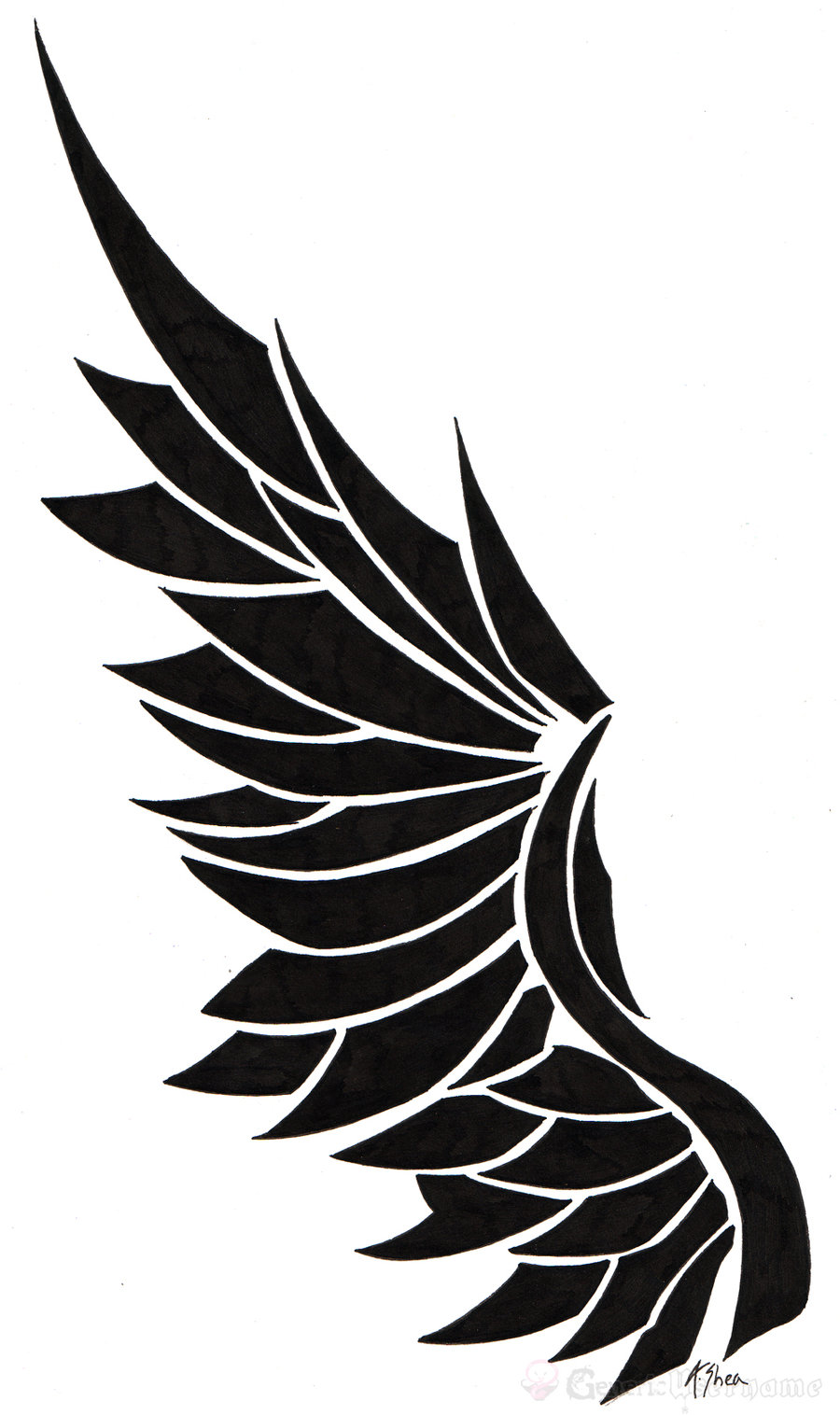 Wing clipart single. Free download clip art