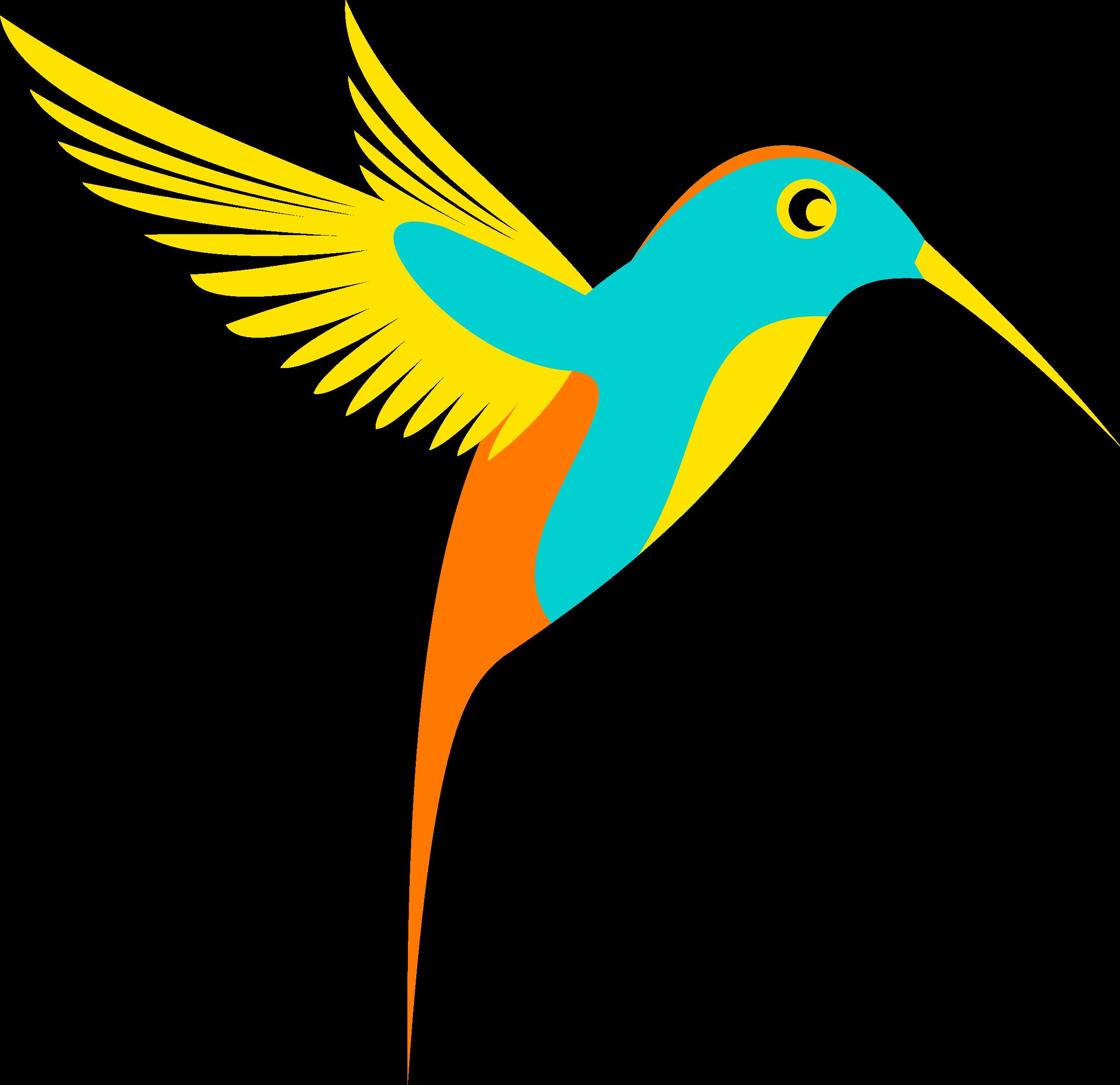Wing clipart single. Colibri bird colorfull big
