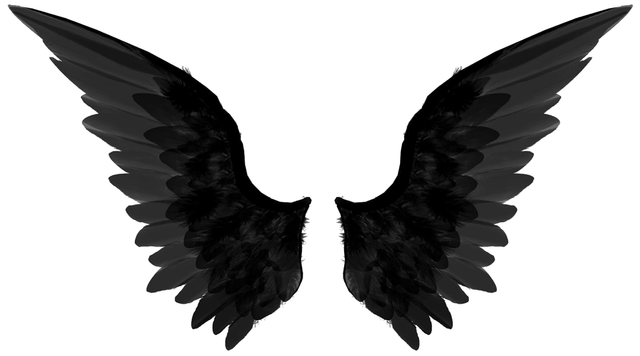 Wings png album on. Wing clipart supernatural