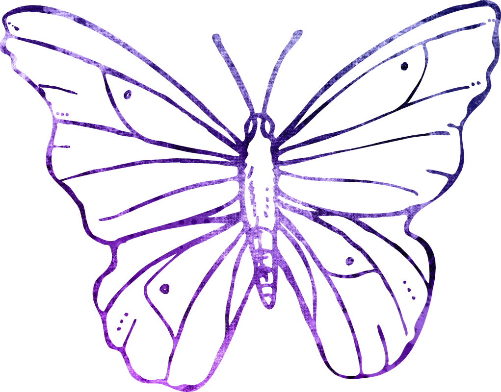 Png modern clip art. Wing clipart transparent