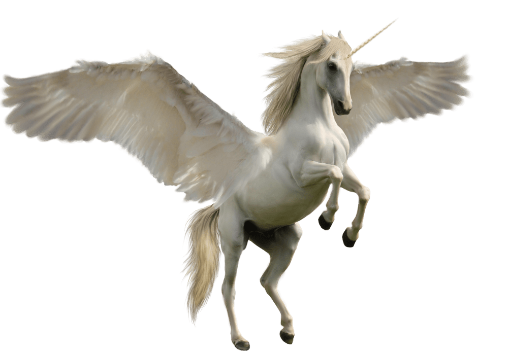 Wing clipart unicorn. Jump transparent png stickpng