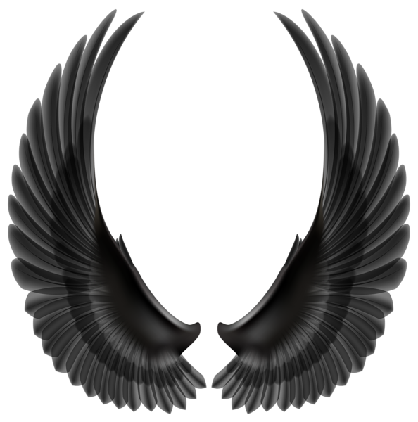 Black wings png clip. Wing clipart wing hd