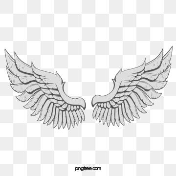 Angel png images vector. Wing clipart wing hd