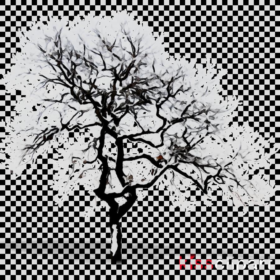 Season drawing tree . Winter clipart plant