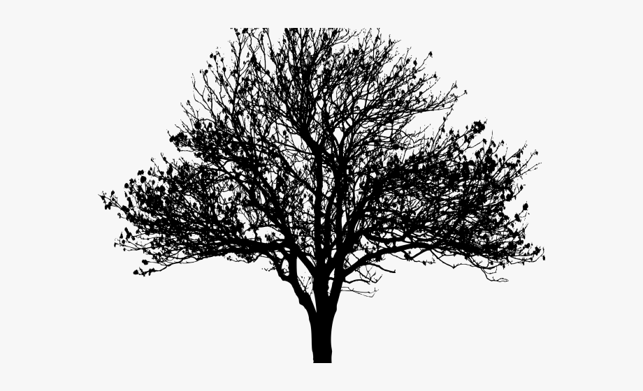Winter clipart silhouette. Tree png free
