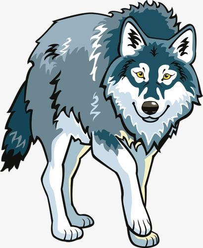Wolf clipart. White snow cartoon png
