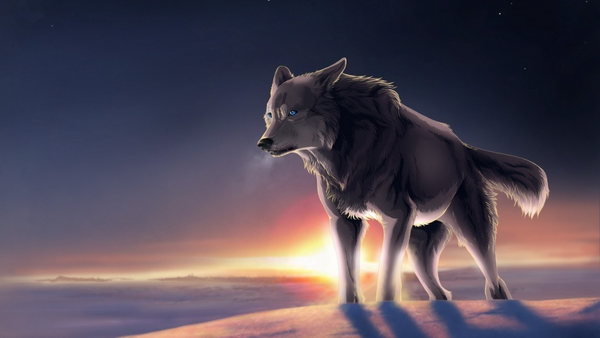 M free images at. Wolf clipart alpha