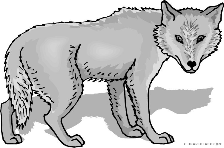 Wolf clipart gray wolf. Clipartblack com animal free