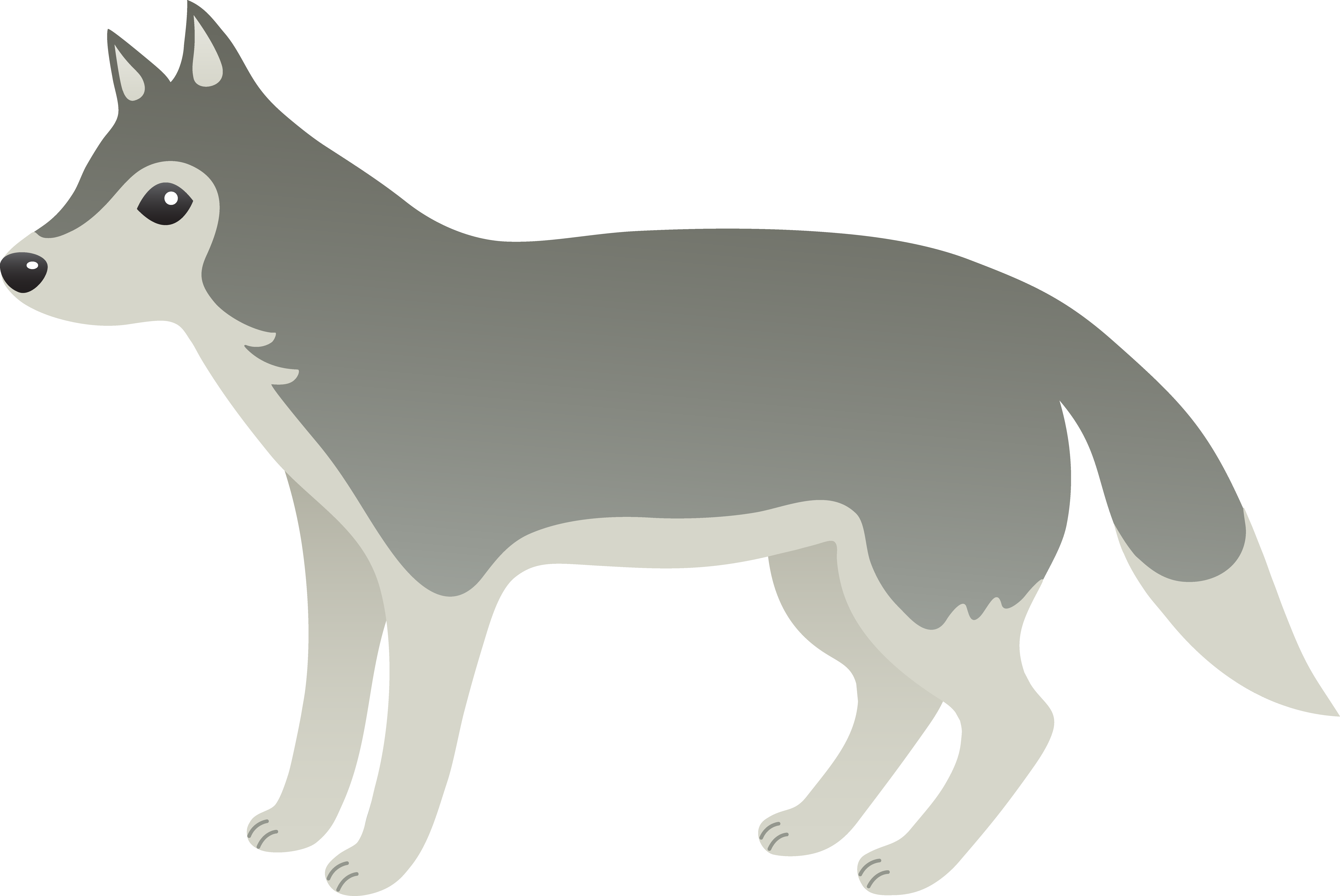 collection of high. Wolves clipart gray wolf