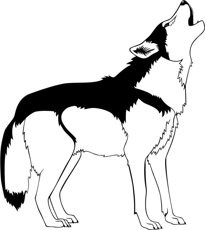 Black and white cliparting. Wolf clipart kid