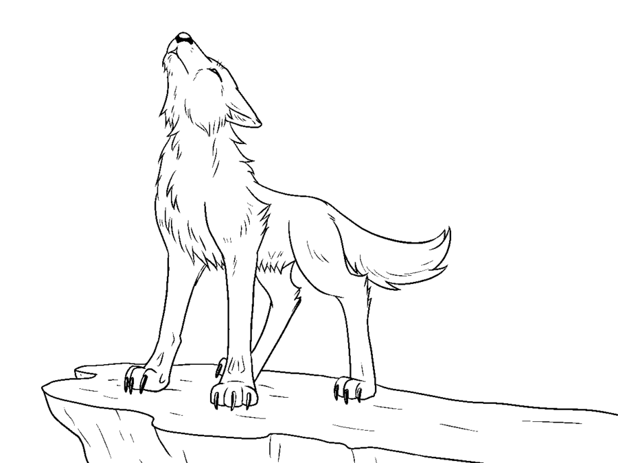 Black background drawing sketch. Wolf clipart line