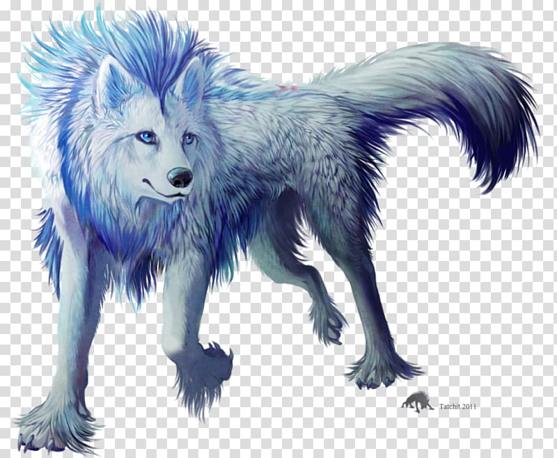 Gray american frontier myth. Wolf clipart magic