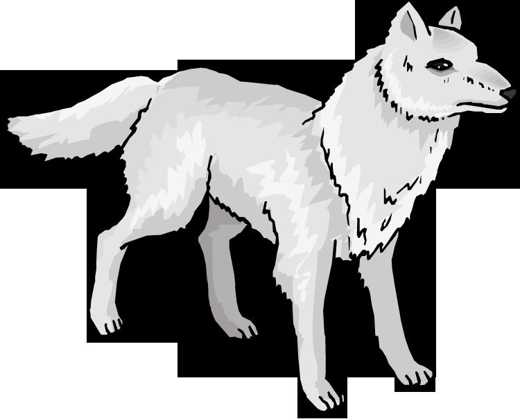 Arctic mexican fox clip. Wolf clipart snow