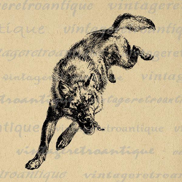 Digital image download illustration. Wolf clipart vintage