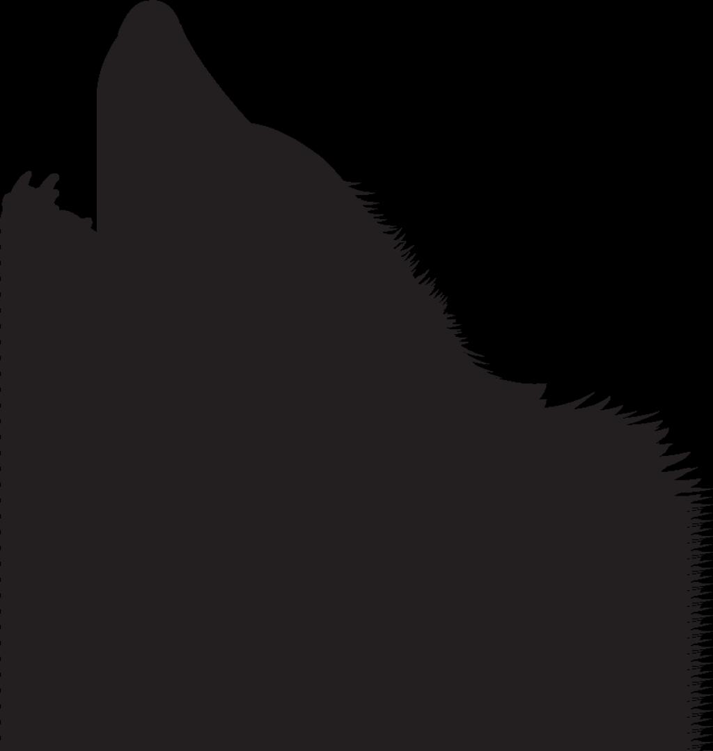Black crazywidow info. Wolf clipart wolf head