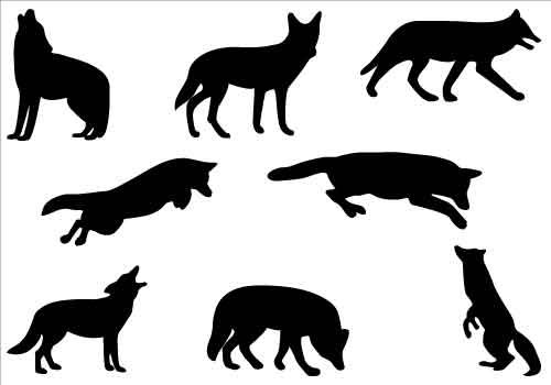 Pin by rita herron. Wolves clipart coyote