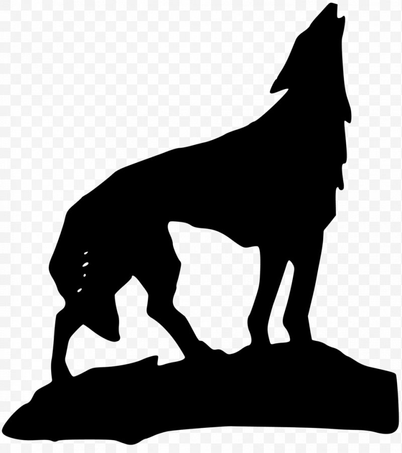 Wolves clipart gray wolf. Clip art png x