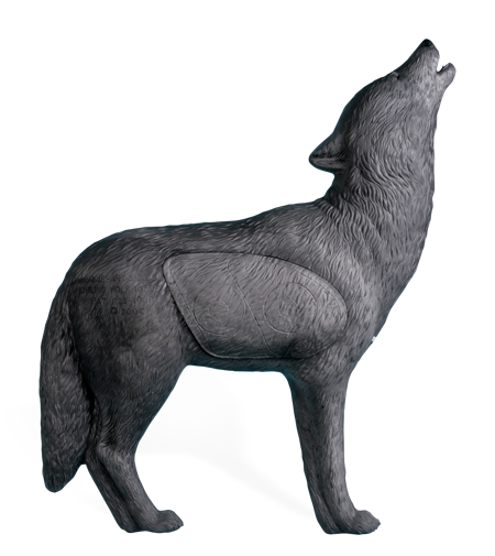 Transparent png free download. Wolves clipart grey fox