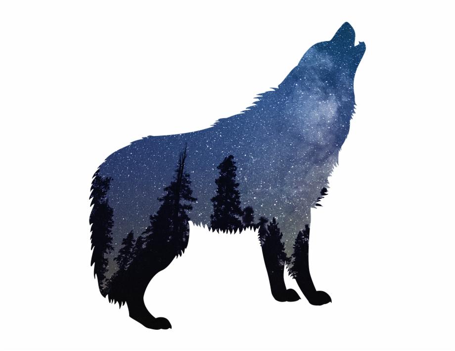 Wolf wild animal wildlife. Wolves clipart nature